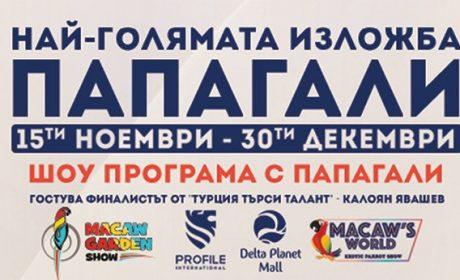 Най-голямата изложба за папагали с фурор във Варна