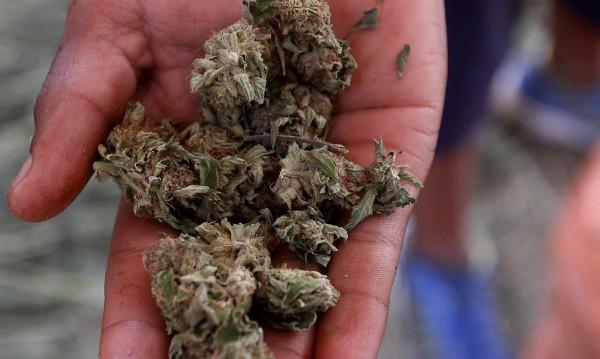 78-годишна баба и внук ѝ продавали марихуана от дома си