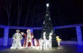 Коледната елха озари Девня