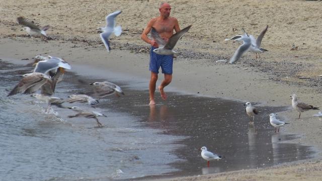 """Варненски """"морж"""" се закалява на брега на морето (СНИМКИ)"""