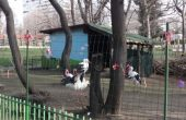 Канят варненци да правят мартеници за животните в зоопарка