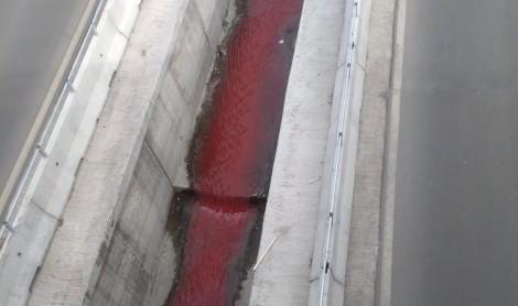 """Варненка: Кървавочервена вода потече в канала на бул. """"Левски"""" (снимки)"""