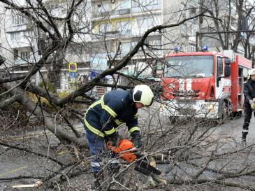 Екипи работят по разчистването на падналите дървета и клони