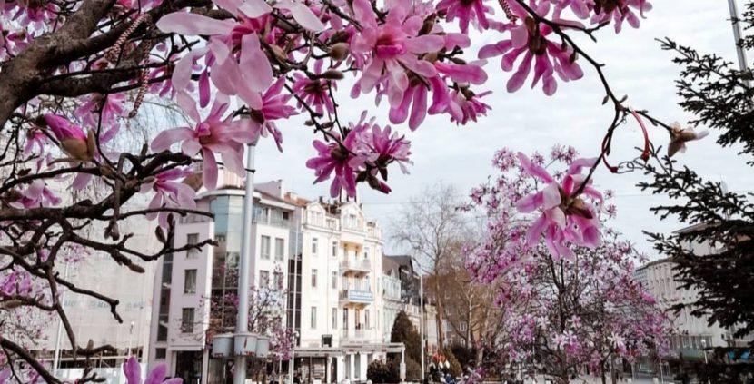 Красота във Варна по време на извънредно положение (снимки)