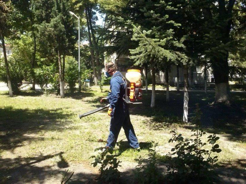 Започва обработка против кърлежи в дворовете на училища и градини
