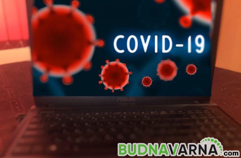 Лъжите за заразата: Хората умират от COVID-19, но и от глупост