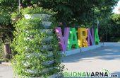 Цветарници красят центъра на Варна (снимки)