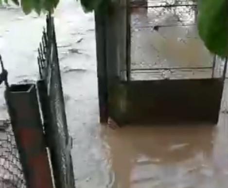 Река излезе от коритото си и наводни варненско село (видео)