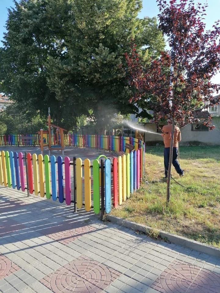 Бум на бълхи по детските площадки в Аспарухово