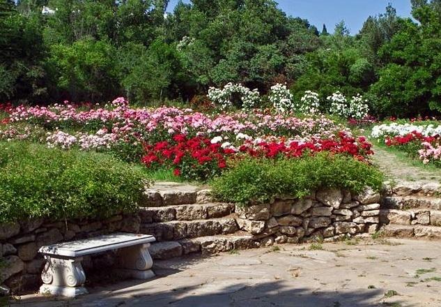 Проверяват собствеността на Ботаническата градина във Варна