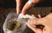 Хванаха 18-годишен варненски дилър на марихуана
