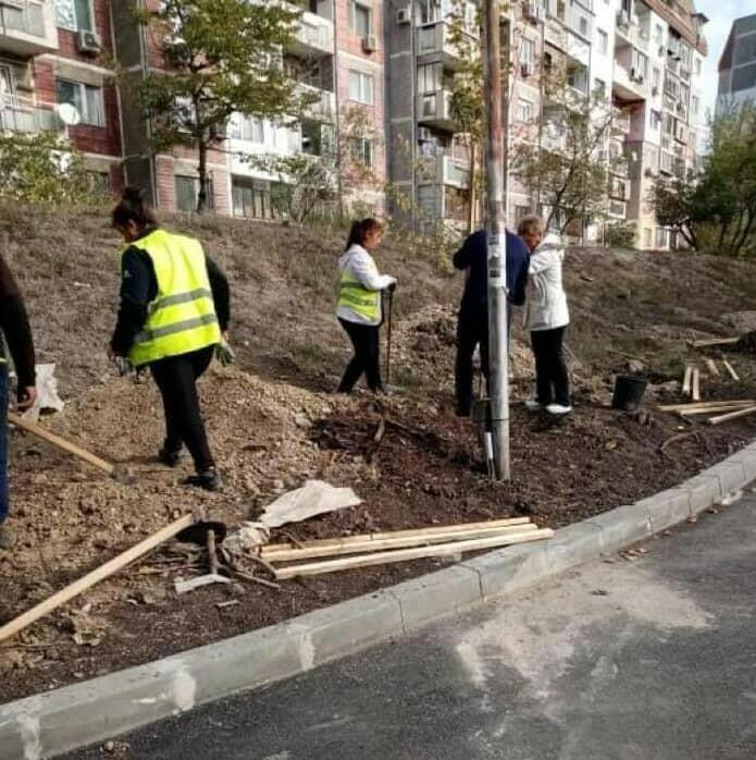 """Засадиха 60 дръвчета във варненския квартал """"Възраждане"""""""