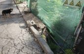 Пропада улица около археологически разкопки в центъра на Варна (снимки)