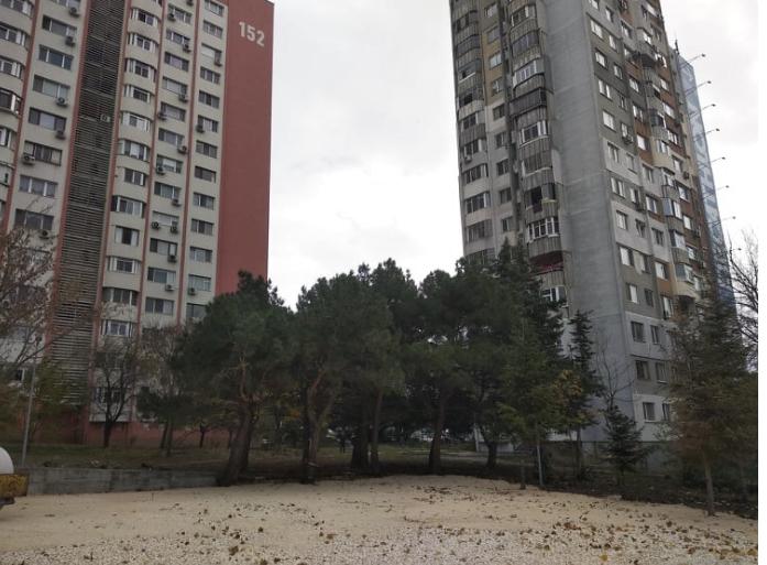 Жители на варненски квартал сигнализират за унищожаване на дървета, заради строеж на кооперация (снимки)
