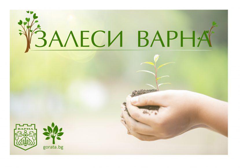 """Започва есенна кампания """"Залеси Варна"""""""