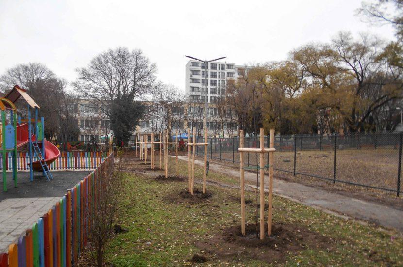 Засадиха дръвчета в най-големия варненски район