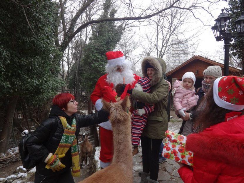 Дядо Коледа ще зарадва и животните във варненския зоопарк