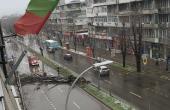 Извъредно! Дърво затвори централен булевард