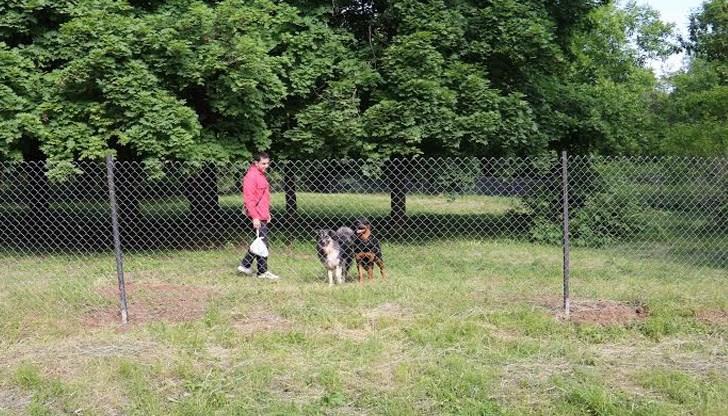 Варненец пита: Толкова ли е трудно да си носите торбичка и да почистите след кучето си?