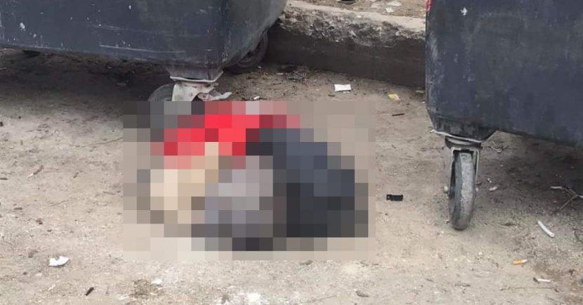 Изхвърлиха убито домашно куче до кофи за боклук