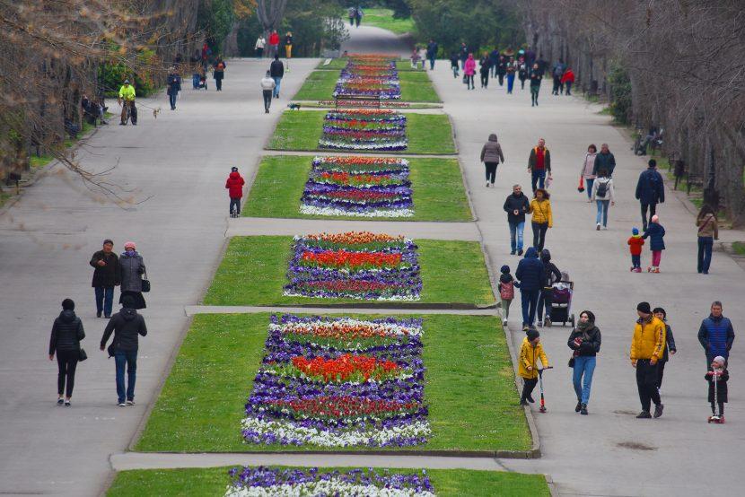 Пролетна красота в Морската градина във Варна (снимки)