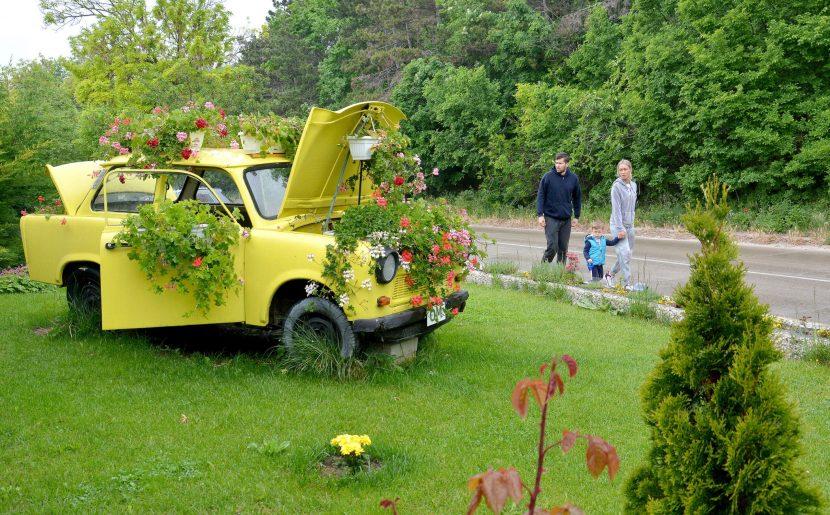 Източни реликви: Трабант с цветя радва варненци